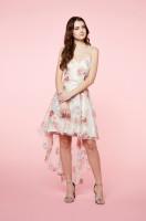 Summer Blossom Dress