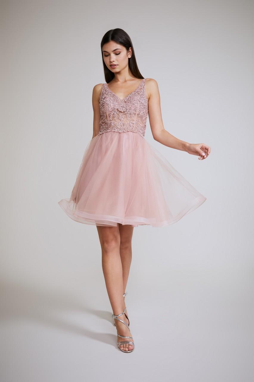 BEAUTIFUL ROSE DRESS