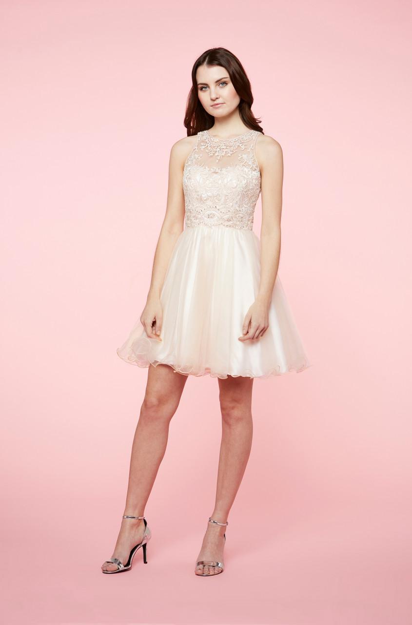 Gorgeous Mesh Dress